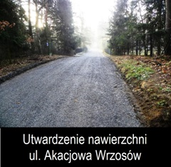 - akacjowa_logo_2_07-08-2014.jpg