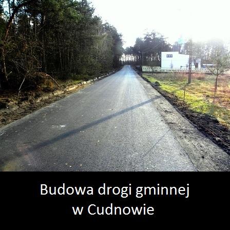 - budowa_drogi_gminnej_w_cudnowie_2015_logo_1-1.jpg
